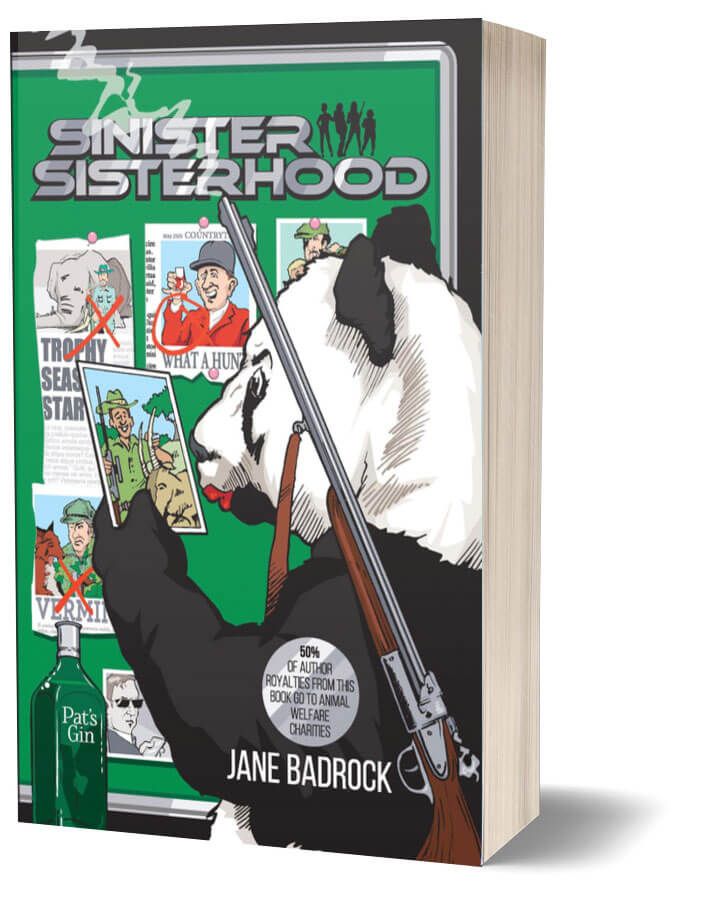 Sinister Sisterhood cover image